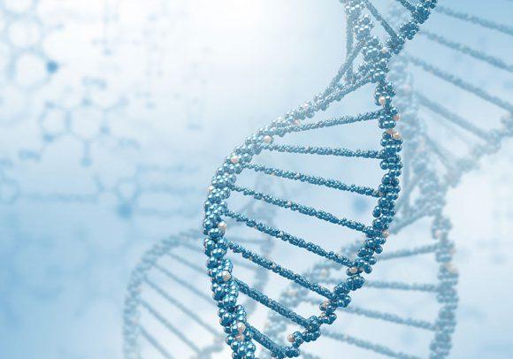 B_2_I-tumori-ereditari-e-il-ruolo-dei-geni-BRCA-SC
